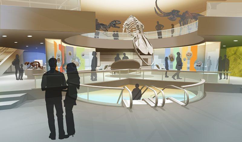 Virginia Museum of Natural History -1st-floor-main-level